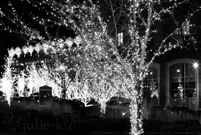national harbor twinkle lights