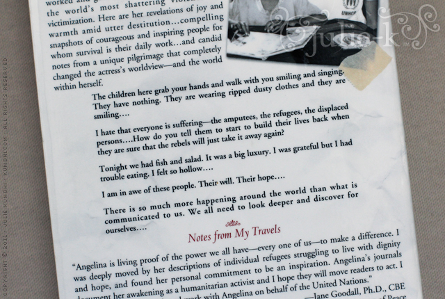 book review angelina jolie notes from my travels